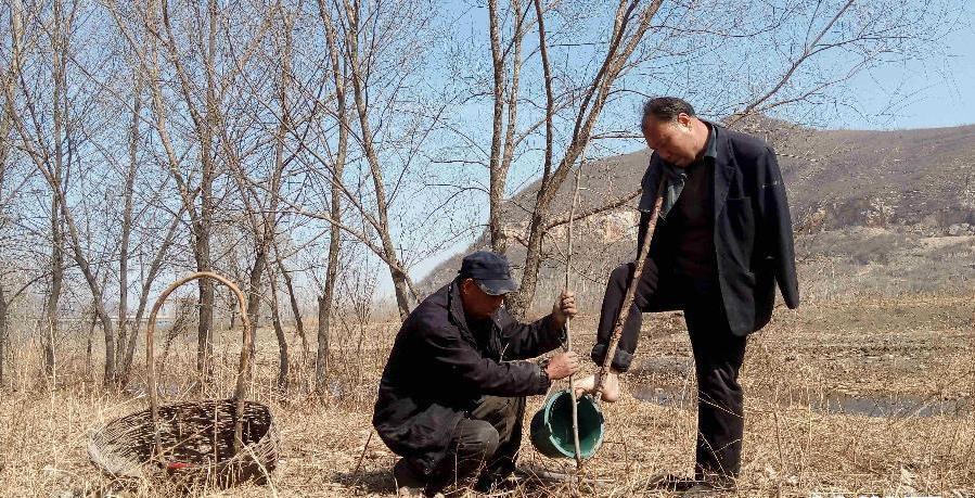 O lecţie de viață pentru noi toţi. Un orb şi prietenul lui fără braţe au plantat 10 000 de copaci! VIDEO