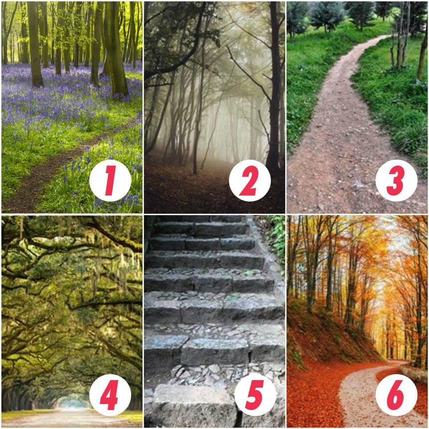 TEST: Alege o cărare și află ce ți-a rezervat viitorul! Ai curaj?